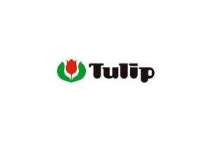 agujas de ganchillo Tulip, agujas de crochet Tulip, mejores marcas de agujas de ganchillo, agujas japonesas, tulip etimo rose, tulip etimo gold oro